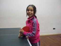 Tischtennis-mini-Meisterschaften 2013